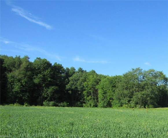 Pierce Road, Garrettsville, OH 44231 (MLS #4197391) :: The Art of Real Estate