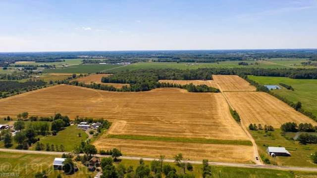 County Road 681, Sullivan, OH 44880 (MLS #4199748) :: Keller Williams Chervenic Realty