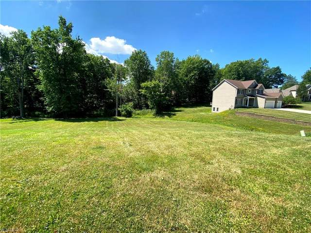 VL Poplar Drive, Willoughby, OH 44094 (MLS #4201740) :: RE/MAX Edge Realty