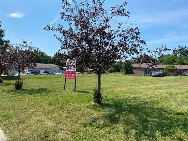 Northmoreland Avenue, Munroe Falls, OH 44262 (MLS #4202029) :: Tammy Grogan and Associates at Cutler Real Estate