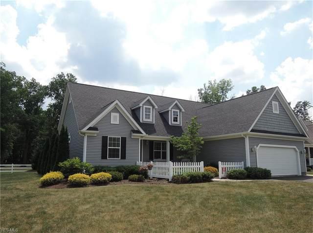 101 Kingston Court, Warren, OH 44484 (MLS #4203834) :: The Art of Real Estate
