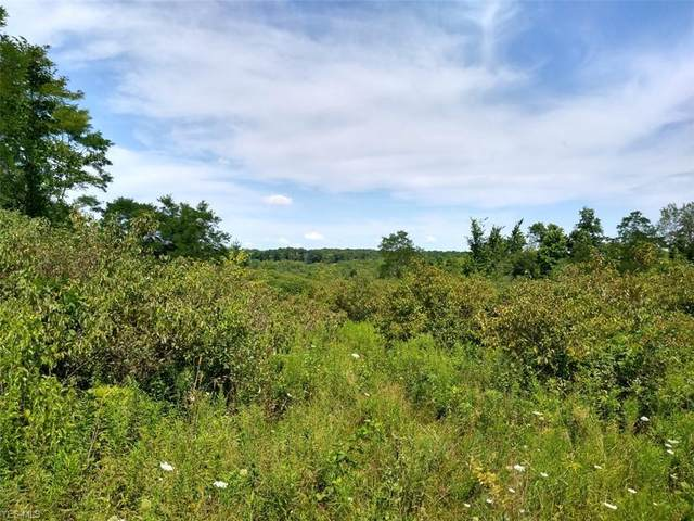 Parcel C State Route 700, Hiram, OH 44234 (MLS #4208803) :: The Jess Nader Team | RE/MAX Pathway