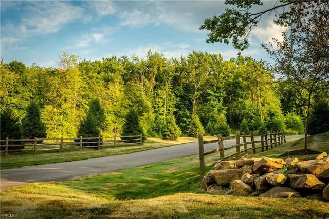 8633 Hunters Ridge Run, Wadsworth, OH 44281 (MLS #4213289) :: The Jess Nader Team | RE/MAX Pathway