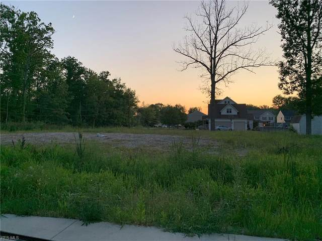 1 California (Lot 1) Street, Reminderville, OH 44202 (MLS #4216794) :: Krch Realty