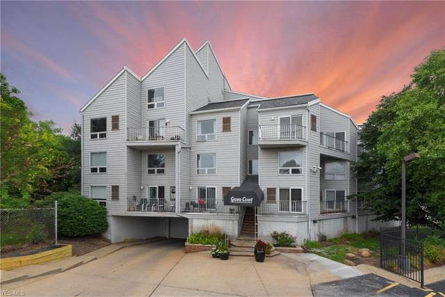 1900 Grove Court #115, Cleveland, OH 44113 (MLS #4218234) :: The Kaszyca Team