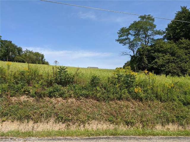 V/L Alabama Avenue NW, Canal Fulton, OH 44614 (MLS #4221163) :: The Holden Agency