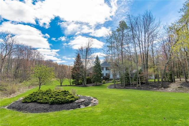 9223 Amber Wood Drive, Kirtland, OH 44094 (MLS #4223247) :: The Art of Real Estate
