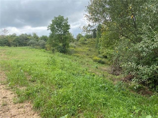 38650 Pumpkin Vine Ridge, Dexter City, OH 45727 (MLS #4223414) :: Select Properties Realty