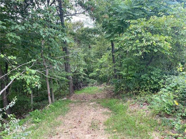 38650 B Pumpkin Vine Ridge, Dexter City, OH 45727 (MLS #4223417) :: Select Properties Realty
