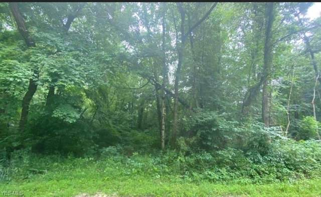 County Road 95, Roseville, OH 43777 (MLS #4230928) :: Krch Realty