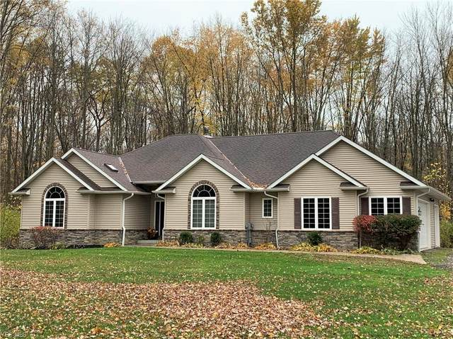 11010 Plank Road, Montville, OH 44064 (MLS #4231190) :: Krch Realty