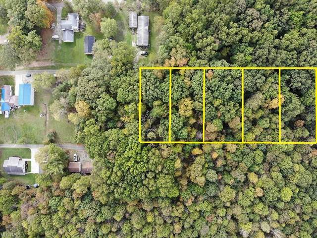Olive Avenue, Lake Milton, OH 44429 (MLS #4231779) :: The Jess Nader Team   REMAX CROSSROADS