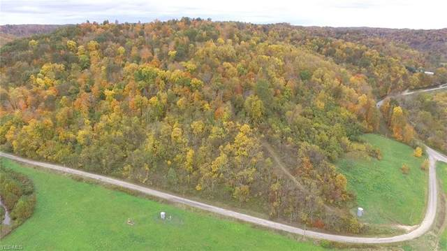 Lot #3 Edwina Road, Woodsfield, OH 43793 (MLS #4231926) :: The Holden Agency