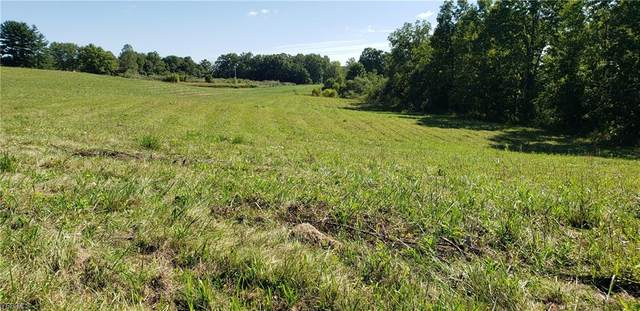 1341 Township Road 312 SE, New Lexington, OH 43764 (MLS #4236914) :: The Holly Ritchie Team