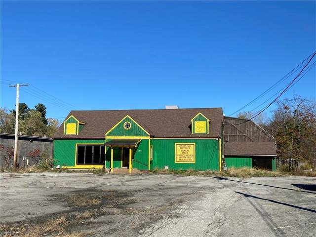 5115 Youngstown Warren Road, Niles, OH 44446 (MLS #4237326) :: The Holden Agency