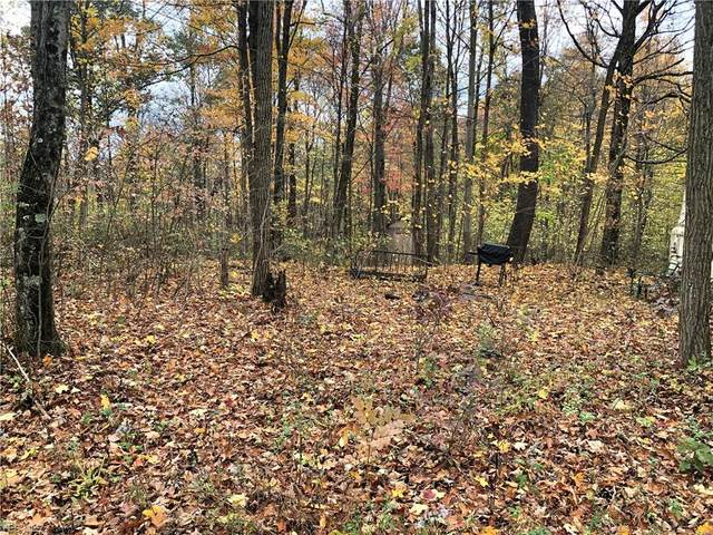 48589 King's Highway, Beallsville, OH 43716 (MLS #4238374) :: RE/MAX Edge Realty