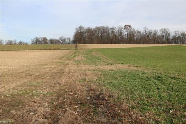 Township Road 351, Millersburg, OH 44654 (MLS #4241183) :: The Crockett Team, Howard Hanna