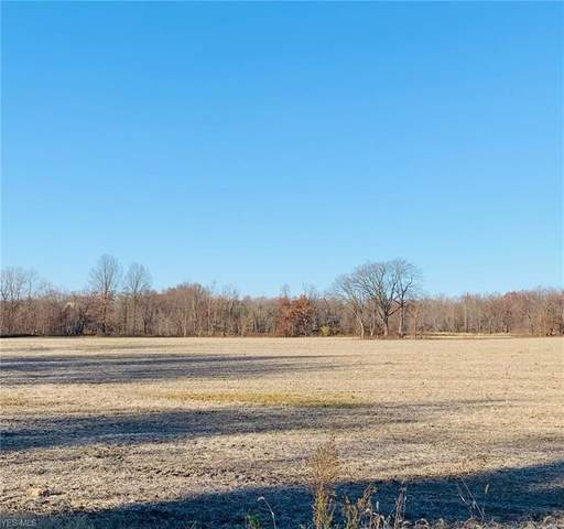 Miller Road, Poland, OH 44514 (MLS #4242232) :: TG Real Estate