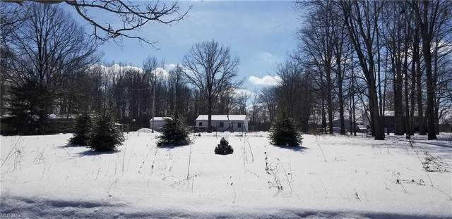 16745 Peters Road, Middlefield, OH 44062 (MLS #4243189) :: The Holden Agency