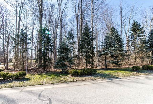 130A Glengarry Drive, Aurora, OH 44202 (MLS #4245077) :: Select Properties Realty