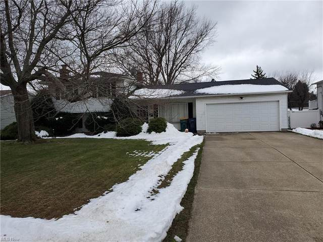 6174 Maplewood Road, Mentor, OH 44060 (MLS #4247028) :: RE/MAX Trends Realty