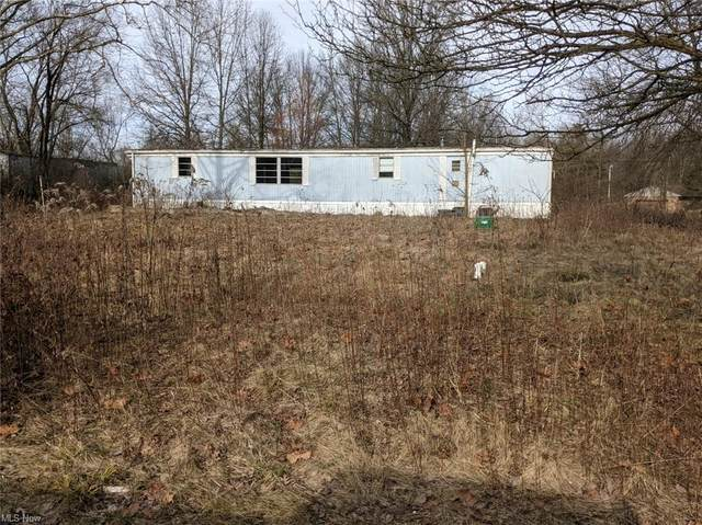 21562 Alliance Sebring Road, Alliance, OH 44601 (MLS #4249663) :: Select Properties Realty