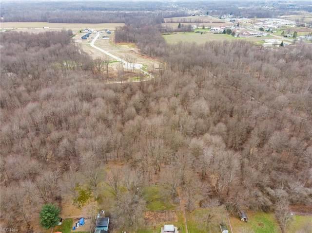 Crystal  Creek, Eaton, OH 44044 (MLS #4251021) :: The Art of Real Estate