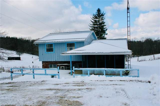 7055 Autumn Road SW, Carrollton, OH 44615 (MLS #4252846) :: The Holden Agency