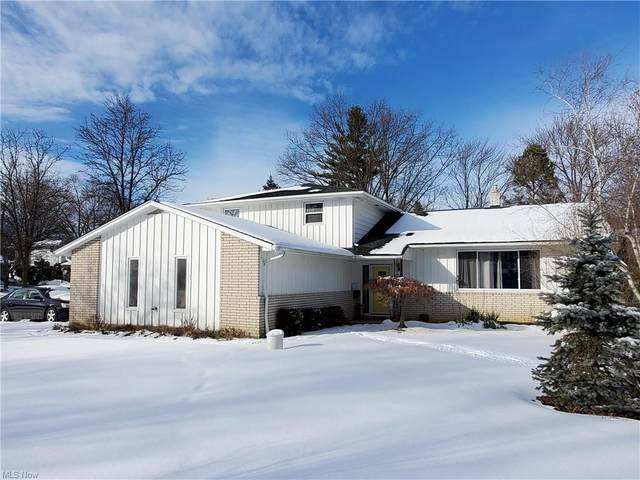 5149 Graham Drive, Lyndhurst, OH 44124 (MLS #4253419) :: The Art of Real Estate