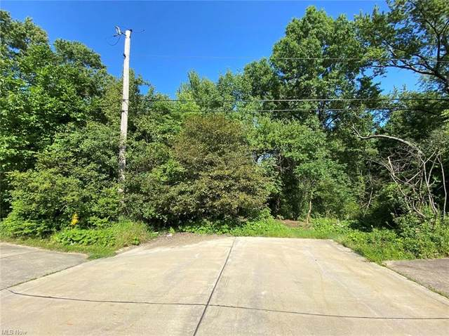 Royalton Road, Brecksville, OH 44141 (MLS #4254416) :: The Holden Agency