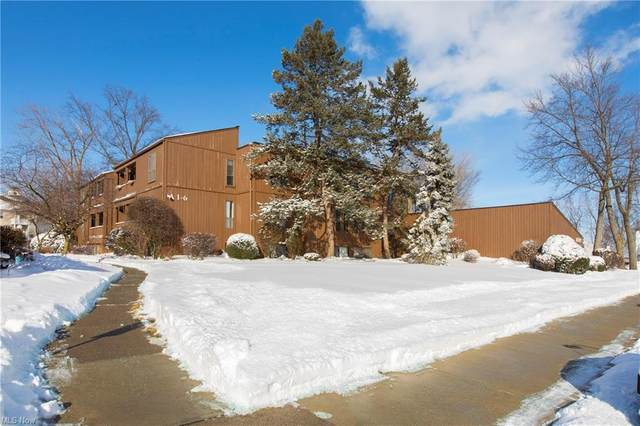 33803 Electric Boulevard A4, Avon Lake, OH 44012 (MLS #4255240) :: The Art of Real Estate
