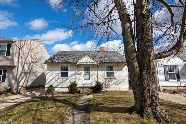 1685 Mapledale Road, Wickliffe, OH 44092 (MLS #4255648) :: The Art of Real Estate