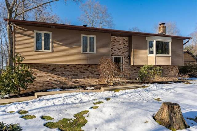 4209 Woodhollow Drive, Mantua, OH 44255 (MLS #4256111) :: The Holden Agency