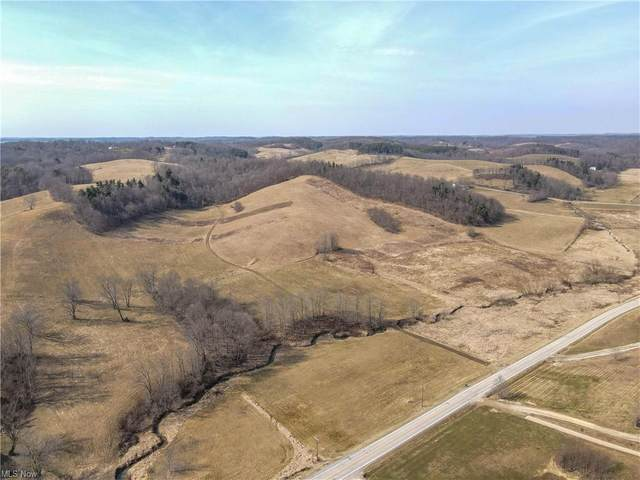 Magnolia Road State Rd 542, Dellroy, OH 44620 (MLS #4256223) :: The Kaszyca Team