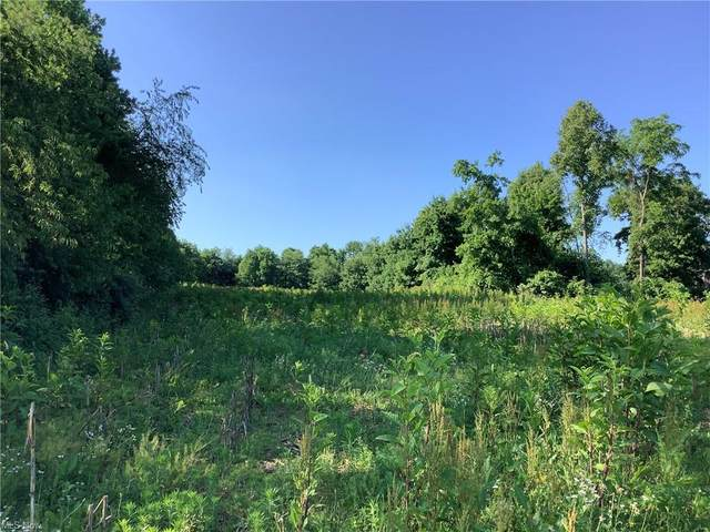 Gunther Miller Road, Stone Creek, OH 43840 (MLS #4256345) :: The Jess Nader Team | RE/MAX Pathway