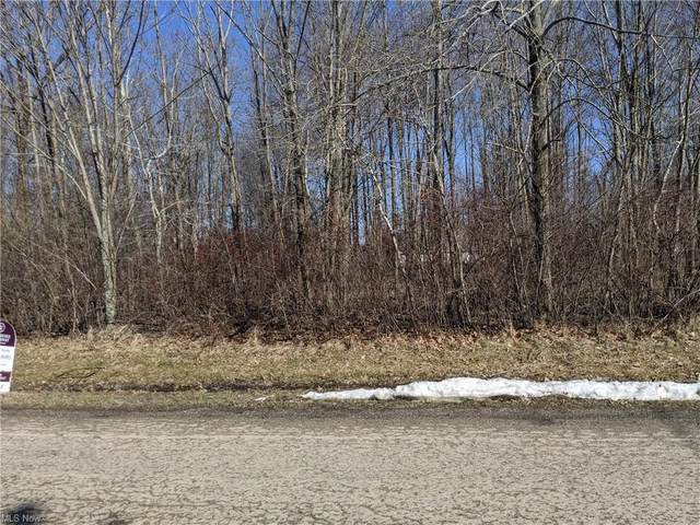 1317 Lake Vue Drive, Roaming Shores, OH 44085 (MLS #4257481) :: The Holden Agency