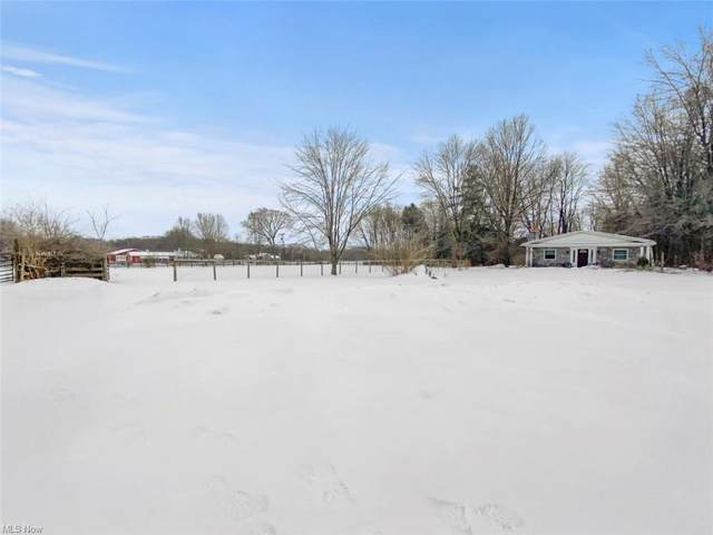 8670 S Salem Warren Road, Canfield, OH 44406 (MLS #4257546) :: Keller Williams Legacy Group Realty