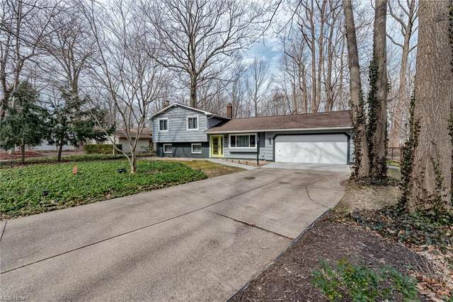 8739 Hilltop Drive, Mentor, OH 44060 (MLS #4260190) :: The Art of Real Estate