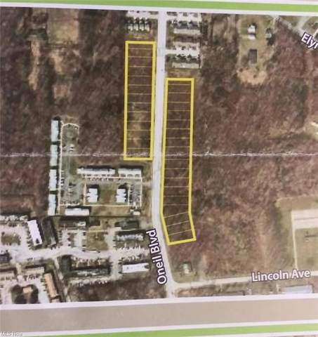 Oneil Boulevard, Lorain, OH 44055 (MLS #4261494) :: The Art of Real Estate