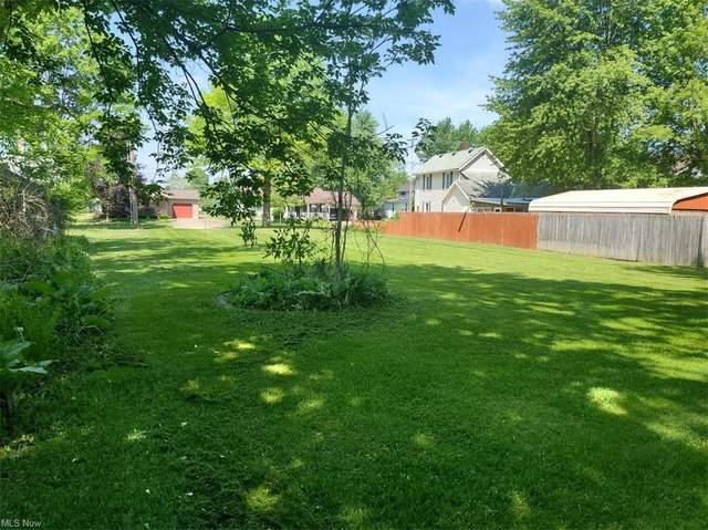 139 S Mill Street, Wellington, OH 44090 (MLS #4262890) :: TG Real Estate