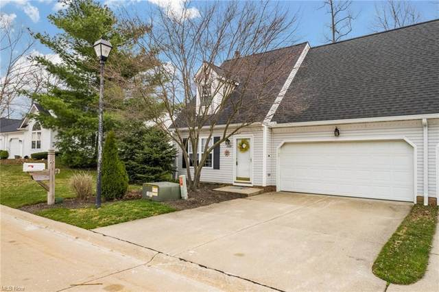7108 Rushmore Way, Painesville, OH 44077 (MLS #4264488) :: The Holden Agency