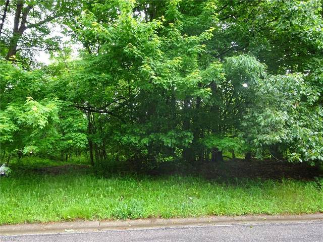 Woodbend, Ravenna, OH 44266 (MLS #4264666) :: The Crockett Team, Howard Hanna
