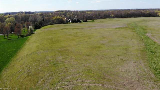 Maplevale Drive, Canfield, OH 44406 (MLS #4269966) :: TG Real Estate
