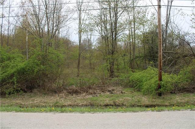 V/L Hatches Corners Road, Conneaut, OH 44030 (MLS #4272927) :: Select Properties Realty