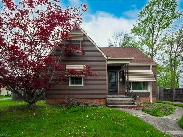 6940 Orchard Boulevard, Cleveland, OH 44130 (MLS #4273792) :: Keller Williams Legacy Group Realty