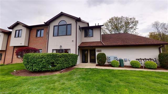 7257 Village Drive, Mentor, OH 44060 (MLS #4273974) :: RE/MAX Trends Realty