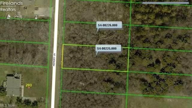 Memory Lane, Kelleys Island, OH 43438 (MLS #4275829) :: TG Real Estate