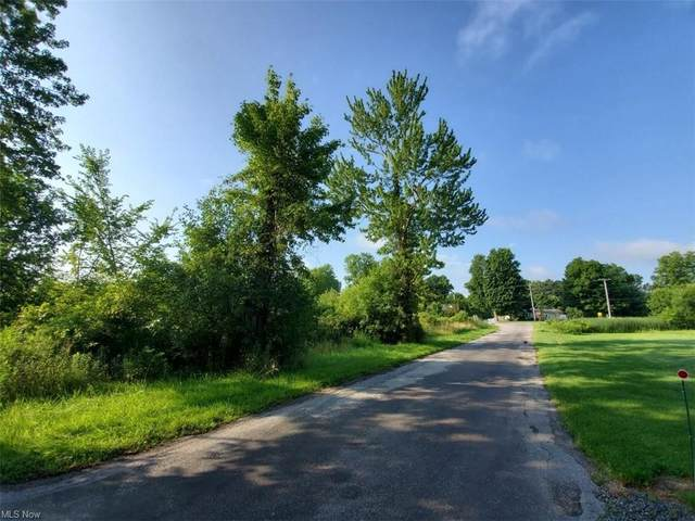 State Route 82, Newton Falls, OH 44444 (MLS #4277130) :: The Tracy Jones Team
