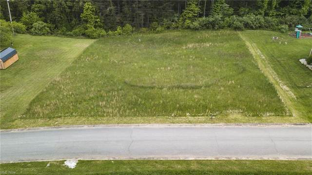 Highland Meadows Drive, Davisville, WV 26142 (MLS #4278945) :: RE/MAX Trends Realty