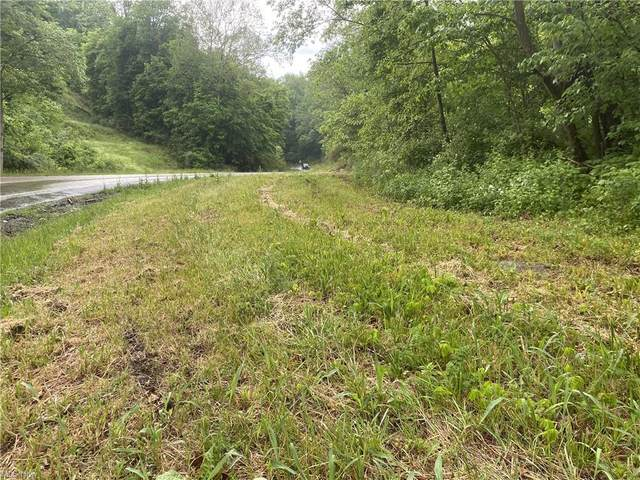 State Route 339 Road, Dexter City, OH 45727 (MLS #4281943) :: TG Real Estate